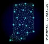 glossy polygonal mesh map of... | Shutterstock . vector #1245656101