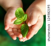 Macro close up of baby hands holding small green plant. - stock photo