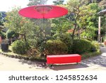 a samurai residence thas's... | Shutterstock . vector #1245852634