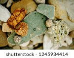 Pebbles  Stones And Dry Plants...