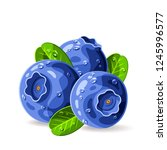 blueberries three with drops of ... | Shutterstock .eps vector #1245996577