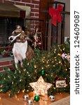 Dog Ruins Christmas
