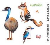 Australia Watercolor Set.cute...