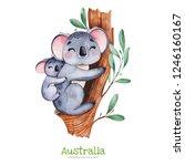australia watercolor set.cute... | Shutterstock . vector #1246160167