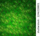 green rass lawn backgriund | Shutterstock .eps vector #1246228801