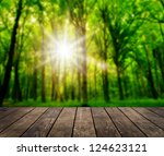 wood textured backgrounds in a... | Shutterstock . vector #124623121