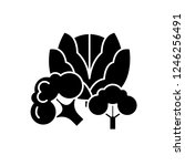 broccoli black icon  vector... | Shutterstock .eps vector #1246256491