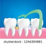 dental floss picks  dental...   Shutterstock .eps vector #1246304881