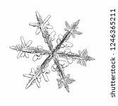 snowflake isolated on white... | Shutterstock .eps vector #1246365211