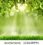 natural green background with... | Shutterstock . vector #124638994