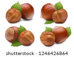 set of hazelnuts with leaves ... | Shutterstock . vector #1246426864