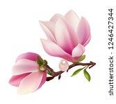 magnolia. beautiful. gentle.... | Shutterstock .eps vector #1246427344