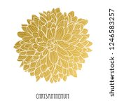 decorative chrysanthemum ... | Shutterstock .eps vector #1246583257