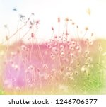 beautiful sweet flower in soft... | Shutterstock . vector #1246706377