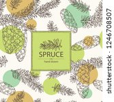 background with spruce  branch... | Shutterstock .eps vector #1246708507