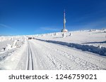 ski trail  or crosscountry... | Shutterstock . vector #1246759021