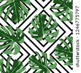 tropical fashion summer... | Shutterstock .eps vector #1246775797