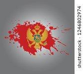 montenegro vector paint stain | Shutterstock .eps vector #1246802974