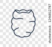 raspberry icon. trendy linear...   Shutterstock .eps vector #1246812787