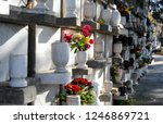 Urns With Ashes In A...