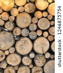 the texture of felled trees.... | Shutterstock . vector #1246875754