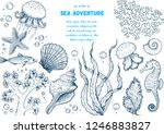 underwater world hand drawn... | Shutterstock .eps vector #1246883827