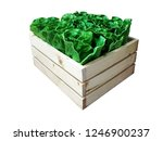 wooden crate with lettuce ... | Shutterstock . vector #1246900237