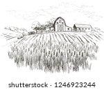 rural landscape field wheat ... | Shutterstock .eps vector #1246923244