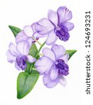 beautiful pencilled lilac... | Shutterstock . vector #124693231