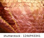 texture of genuine leather ... | Shutterstock . vector #1246943341