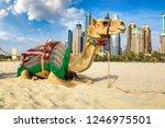 camel in front of dubai marina...   Shutterstock . vector #1246975501