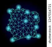 glossy polygonal mesh map of... | Shutterstock . vector #1247016721