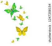 color beautiful butterflies ... | Shutterstock . vector #1247208154