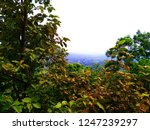 the mountain landscape in... | Shutterstock . vector #1247239297