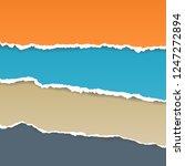 vector torn paper. collection...   Shutterstock .eps vector #1247272894
