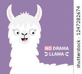 no drama llama alpaca happy... | Shutterstock . vector #1247282674