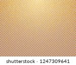 vector golden luxury glitter... | Shutterstock .eps vector #1247309641