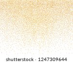 vector golden luxury glitter... | Shutterstock .eps vector #1247309644