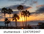 palm trees and pier on... | Shutterstock . vector #1247392447