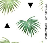 tropical background with jungle ... | Shutterstock .eps vector #1247397661