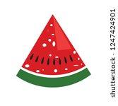 vector water melon  watermelon... | Shutterstock .eps vector #1247424901