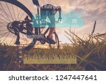 cyclist riding mountain bike on ... | Shutterstock . vector #1247447641