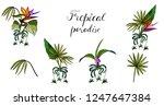 bouquet with sagittarius... | Shutterstock .eps vector #1247647384