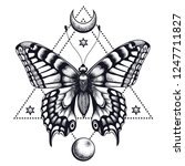 butterfly in triangle  half... | Shutterstock .eps vector #1247711827