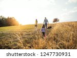 a rear view of family with... | Shutterstock . vector #1247730931