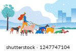 Stock vector vector illustration set icons of dogs and dog walker in the city different breeds basset hound 1247747104