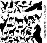 animals   Shutterstock .eps vector #12478732