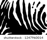 zebra print  animal skin  tiger ... | Shutterstock .eps vector #1247960014
