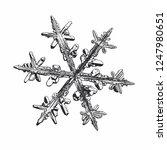 snowflake isolated on white... | Shutterstock .eps vector #1247980651