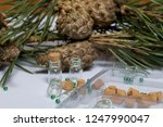 glass bottles with corks in the ... | Shutterstock . vector #1247990047